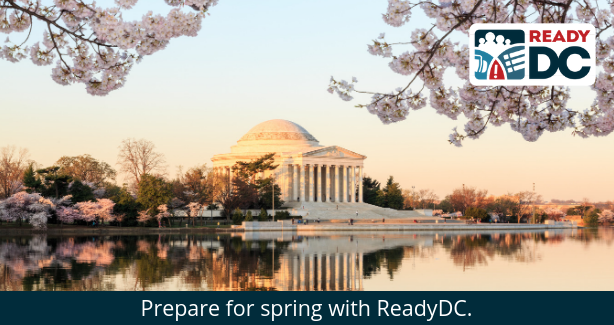 spring into action with ReadyDC